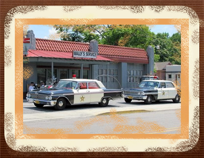 Wally S Squad Car Tours